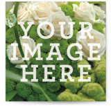 This is a white business card by Minted called The Big Picture printing on signature.
