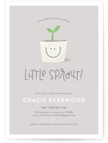 Little Sprout - boy