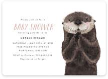 Baby Animal Sea Otter