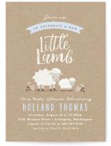 Little Lamb
