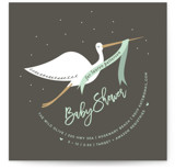Stork Banner
