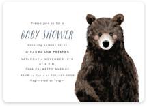 Baby Animal Bear