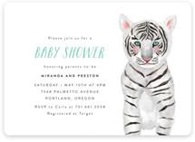 Baby Animal Tiger