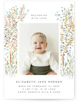 This is a orange birth announcement by Petra Kern called Life Is Everywhere with standard printing on signature in standard.