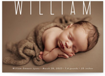 This is a white birth announcement by Sara Hicks Malone called Skyline with standard printing on smooth signature in standard.