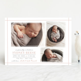 Delicate Frames Birth Announcements