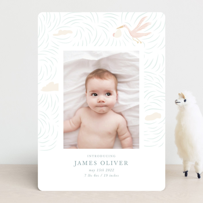 """""""Stork Delivery"""" - Whimsical & Funny Birth Announcements in Blush by Hallie Fischer."""