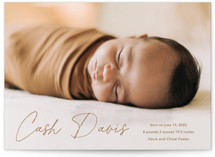 This is a brown birth announcement by Stacey Meacham called Swaddle with standard printing on signature in standard.
