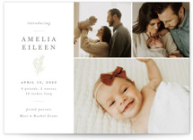 This is a beige birth announcement by Sarah Brown called Tiny Sprig with standard printing on signature in standard.