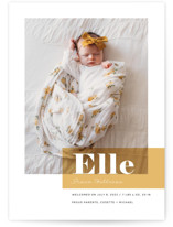 This is a colorful birth announcement by Maria Hilas Louie called Magazine Block with standard printing on smooth signature in standard.