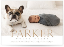 This is a brown birth announcement by Eric Clegg called Modern Classic with standard printing on signature in standard.