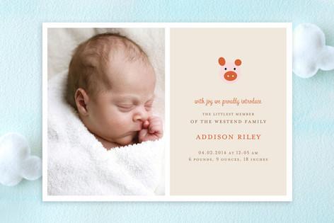 little piglet Birth Announcements