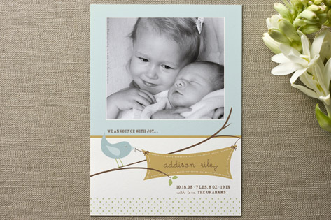 Tweet Tweet Birth Announcements