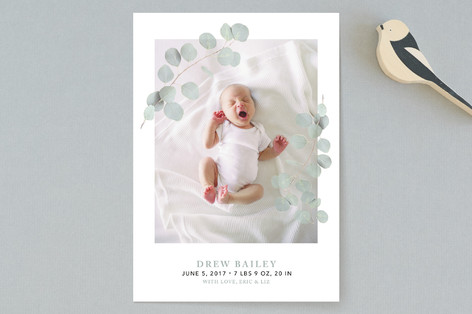 Eucalyptus Laurels Birth Announcements