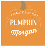 Pumpkin Patch by Laura Hankins