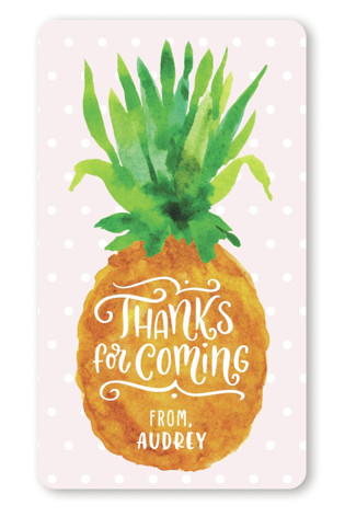 Be A Pineapple Children's Birthday Party Stickers