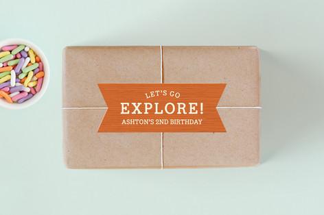 Our Little Explorer Children's Birthday Party Stickers