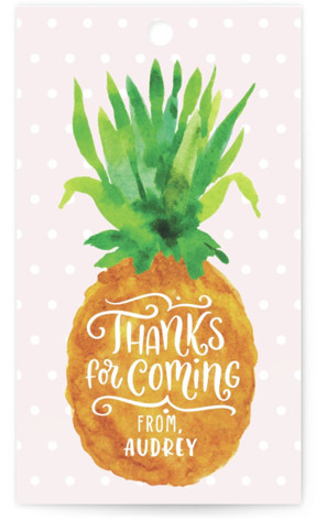 Be A Pineapple Children's Birthday Party Favor Tags