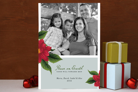Peace Poinsettia Christmas Photo Cards