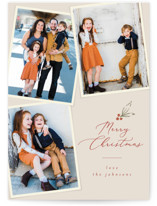 This is a brown photo christmas card by Joanna Griffin called Holiday Snapshots with standard printing on signature in standard.