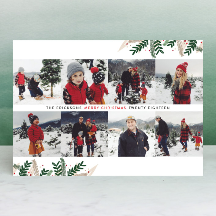 """Eight"" - Christmas Photo Cards in Candy Cane by Ellis."