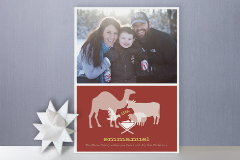 Animal Nativity Christmas Photo Cards
