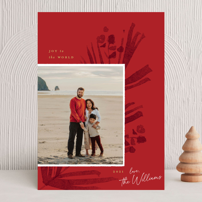 """""""Pinecrest"""" - Christmas Photo Cards in Poinsettia by Robert and Stella."""