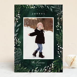Delicate Snow Christmas Photo Cards