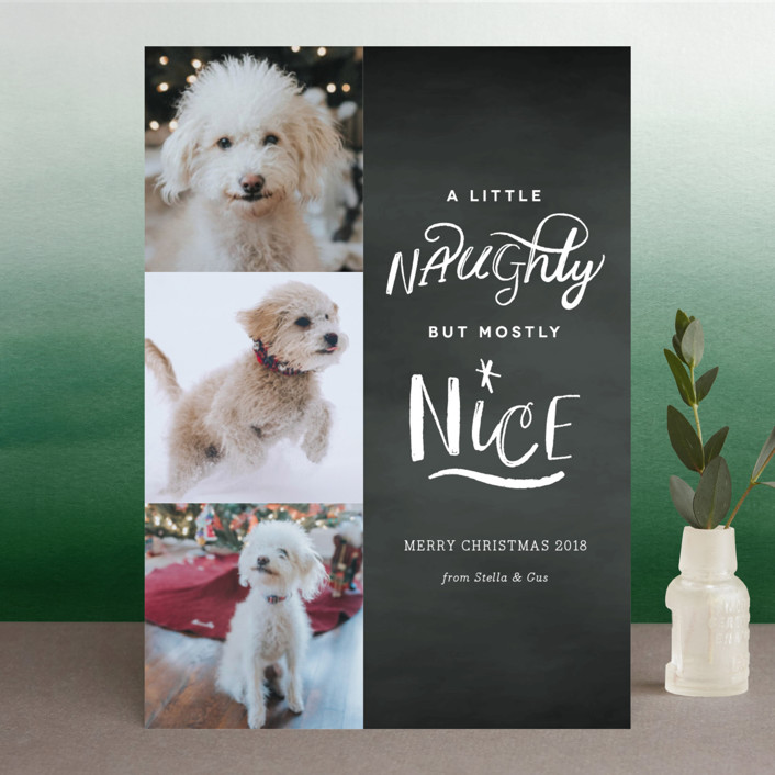 """A Little Naughty"" - Christmas Photo Cards in Chalk by Kelly Nasuta."