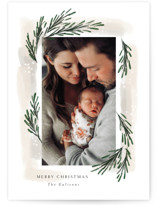 This is a brown photo christmas card by Rebecca Durflinger called sweeping sprigs with standard printing on smooth signature in standard.