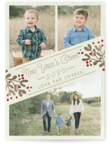 This is a beige photo christmas card by Chris Griffith called Cheers for the New Year with standard printing on smooth signature in standard.