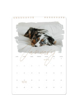 This is a brown photo calendar by Christie Garcia called Eclair printing on premium calendar paper in standard.