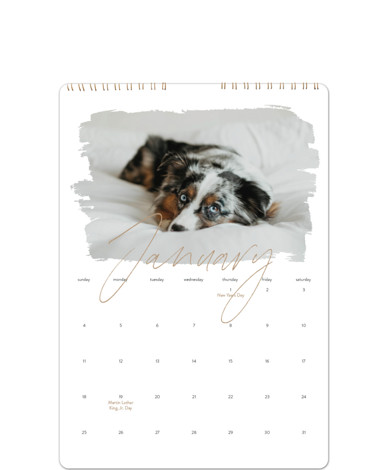 Eclair Calendars