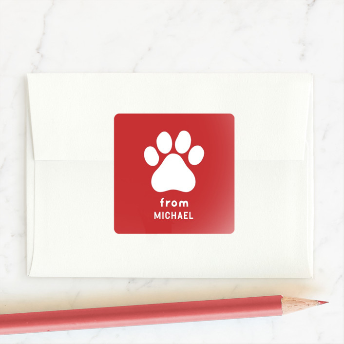 """""""Paws"""" - Custom Stickers in Snow by Susan Brown."""