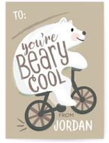 Beary Cool