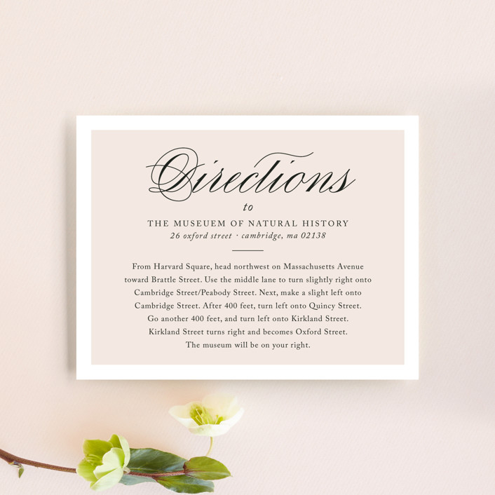 """""""Darling and Dashing"""" - Preppy Direction Cards in Blush by Alston Wise."""