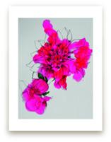 Neon Bloom by Sonal Nathwani