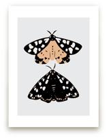 On Moth's Wings