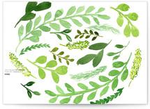 Leaves of Green by Katie Vander Velde