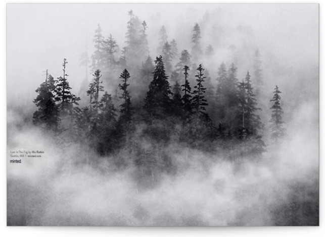 Lost in the Fog