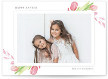 This is a pink easter photo card by Hallie Fischer called Hillwood Gardens printing on smooth signature.