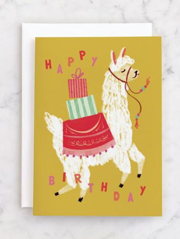 A Whole Llama Fun