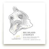Inked Topography - Big Island of Hawai'i