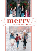 So Merry Guildery Holiday Cards