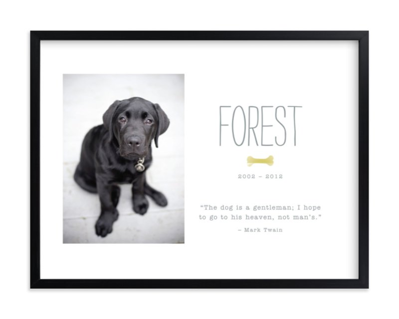 """Doggie Heaven"" - Custom Photo Art Print by Robin Ott in beautiful frame options and a variety of sizes."