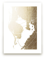 Tampa Map by Laura Condouris