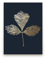 Fragrant Sumac by LemonBirch Design