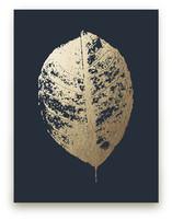 Lemon Tree by LemonBirch Design