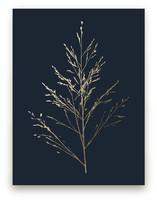 Wild grass by LemonBirch Design