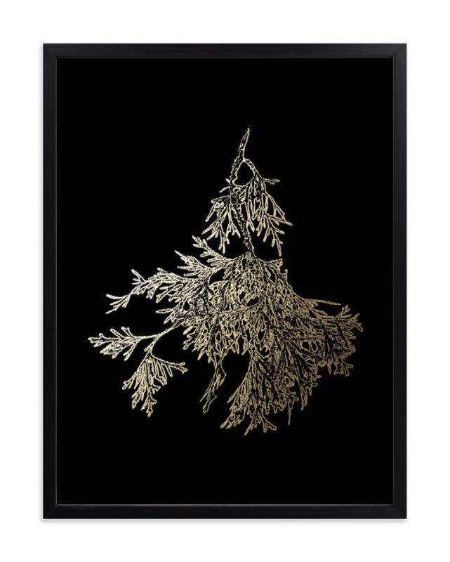 """""""Northern White Cedar"""" - [non-custom] Foil-pressed Art Print by LemonBirch Design in beautiful frame options and a variety of sizes."""